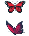 H2O-Toos Swim TattoosRed/Black Double Butterfly