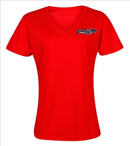 Dragons - Red - SwimOutlet Women's Cotton V-Neck T-Shirt