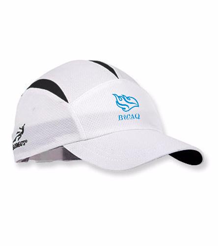 BWAQ Hat - Headsweats Go Hat