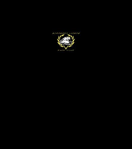 NLSC Hoodie - - SwimOutlet Men's Perfect Long Sleeve Hoodie