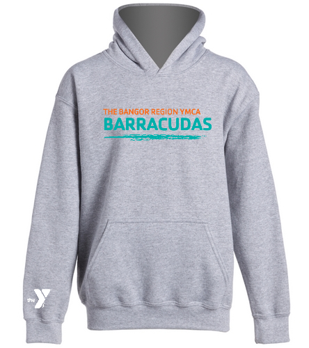 Youth-Hoodie-Barracudas - SwimOutlet Youth Heavy Blend Hooded Sweatshirt