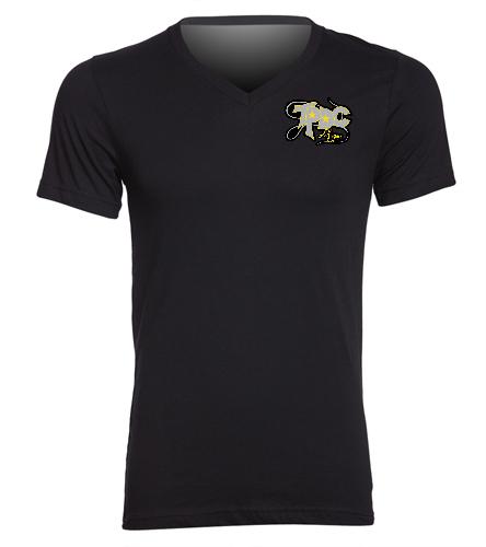 Men's Jersey_TPDC - Bella + Canvas Men's Jersey Short Sleeve V-neck Tee
