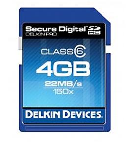 Delkin Devices SD Memory Card - 4GB