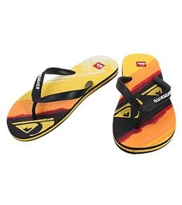 Quiksilver Men's Molokai Art Series Sandals