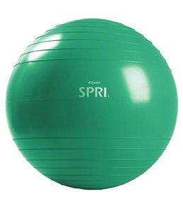SPRI Total Body Training Xercise Ball