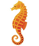 H2O-Toos Swim Tattoos Sea Horse Female