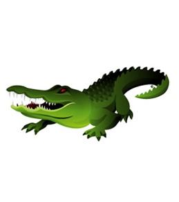 H2O-Toos Swim Tattoos Gator