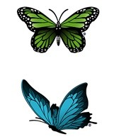H2O-Toos Swim Tattoos Green Butterfly