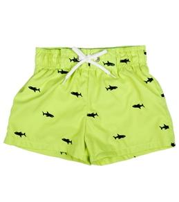 Flapdoodles Boys' Schiffli Shark Trunk (4-7)