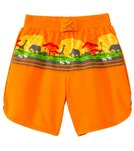 iPlay Boys' Safari Mix 'N Match Ultimate Swim Diaper Panel Boardshorts (3mos-4yrs)