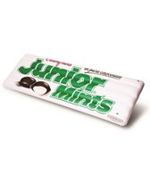 Big Mouth Toys Officially Licensed Junior Mints Candy Pool Float
