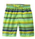 Sunshine Zone Boys' Stripe Boardshort (2T-4T)