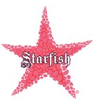 H2O Toos Starfish Light Pink Temporary Tattoo