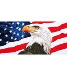 Dohler 30x60 American Eagle Beach Towel 30 x 60