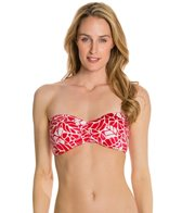 Jag South Pacific Bandeau Bra Bikini Top