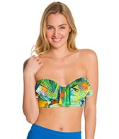 swim-systems-paradise-island-underwire-bustier-bandeau-top