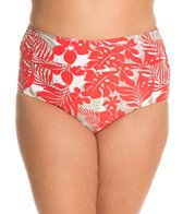 beach-house-plus-size-newport-tropical-fold-over-high-waist-bottom