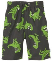 iplay-boys-black-t-rex-swim-diaper-pocket-trunks-(6mos-4yrs)