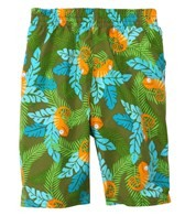 iPlay Boys' Olive Chameleon Swim Diaper Trunks (6mos-4yrs)