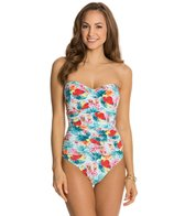 BLEU Rod Beattie Island Times Underwire D-Cup One Piece