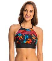 Adidas Women's Paradise Crop Bikini Top