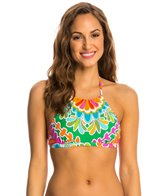 Trina Turk Swimwear Tamarindo High Neck Bra Bikini Top
