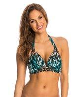 Beach Diva Swimwear Wild Inhibitions Push Up Molded Bra Bikini Top