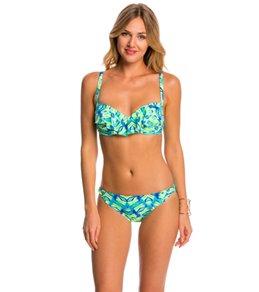 Coco Reef Amazon Aura Ruffle Bikini Top (C/D/DD Cup)
